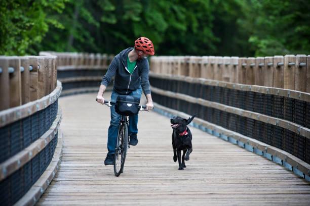 dog chasing man on bike